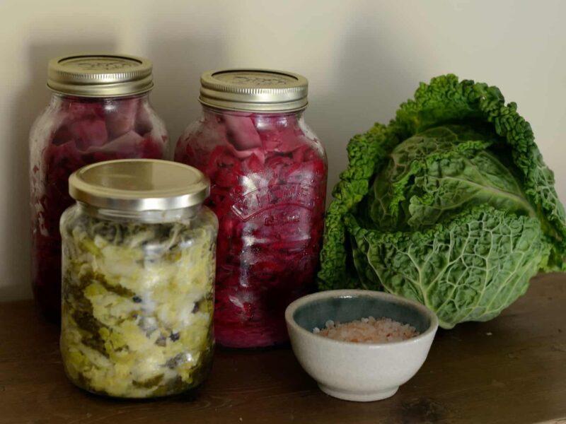 Fermentisana hrana, vaš put do optimalnog zdravlja