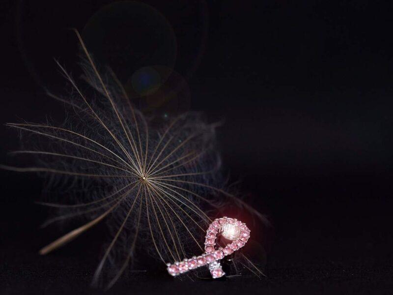 Snaga integrativnog pristupa u tretmanu raka dojke