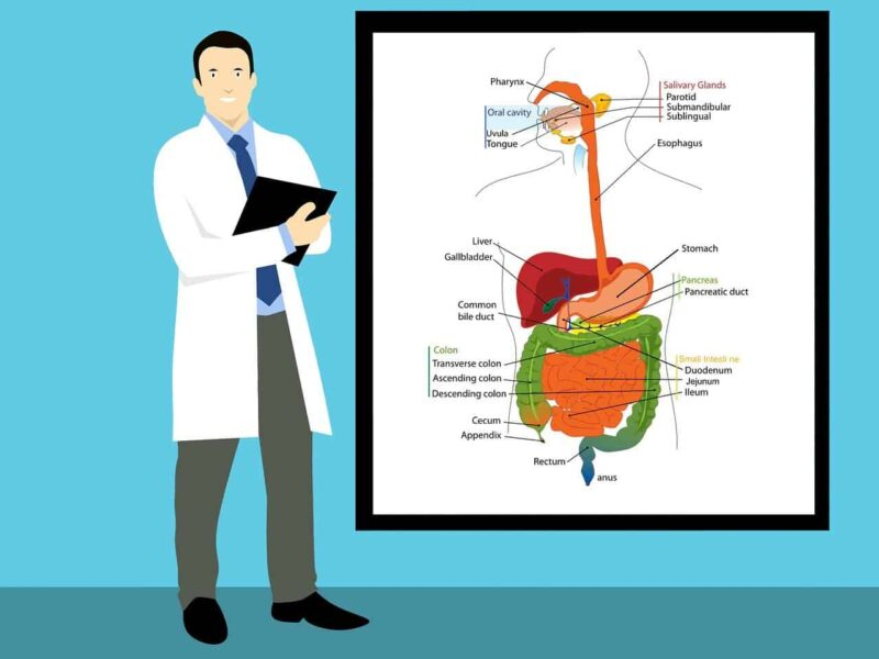 Bolesti gastrointestinalnog trakta